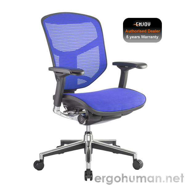 Enjoy Elite Ergonomic Mesh Office Chair